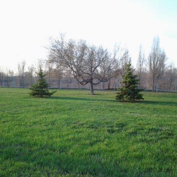 С 1 мая – Парк работает по летнему расписанию