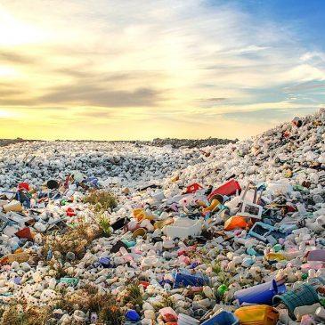 Собирать отходы правильно